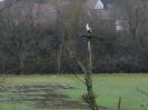 Vogelschutzgebiet_1
