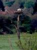 Vogelschutzgebiet_2